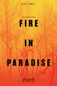Fire in Paradise